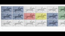 【Google Doodle - Eadweard J. Muybridge】【Way】